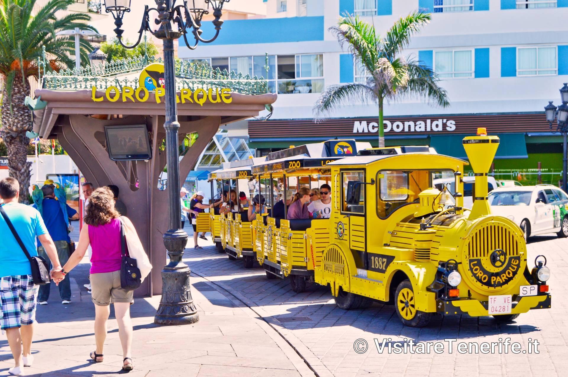 Cosa fare con i bambini a Tenerife – Visitare Tenerife in ...